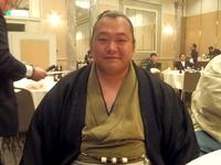 sumo-3.jpg